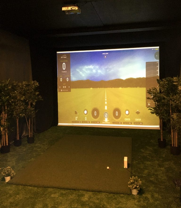 Show me your swing golfing tuition and simulator